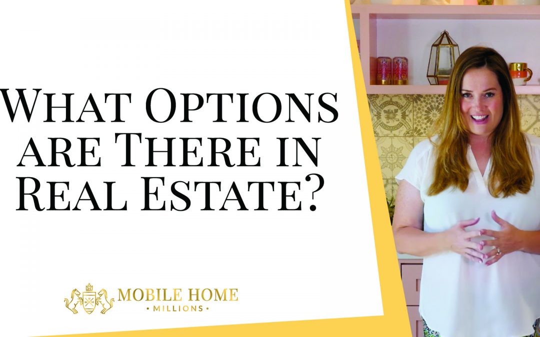 What Options are There in Real Estate?